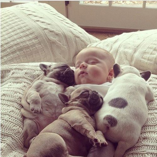 babyandpuppies